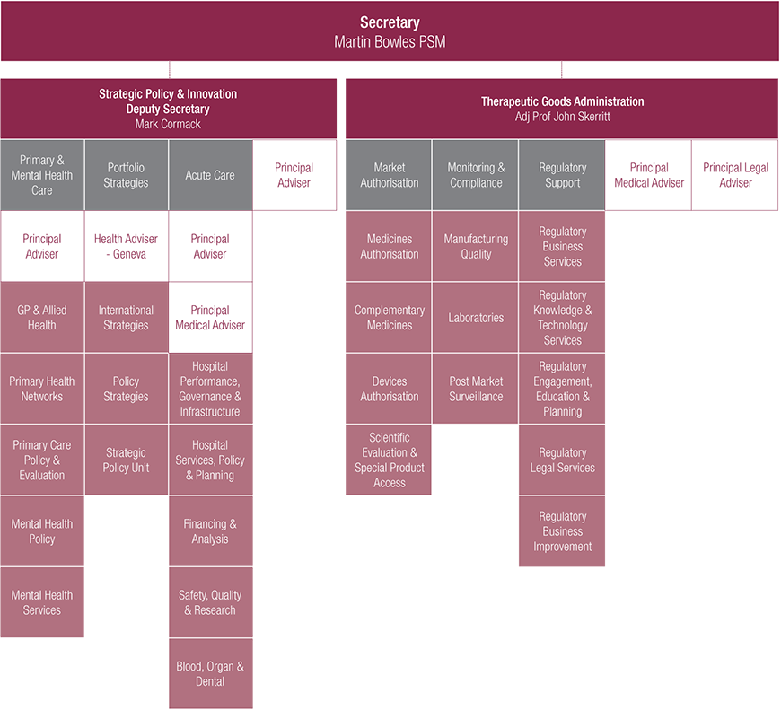 This is an image of the Department's Structure Chart, which provides the organisational structure as at 30 June 2015.